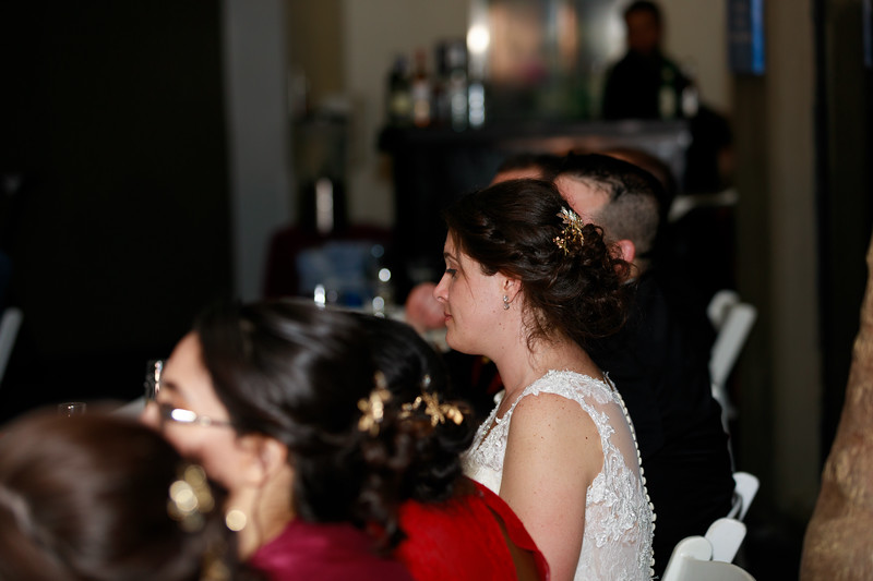 1706-Trybus-Wedding.jpg