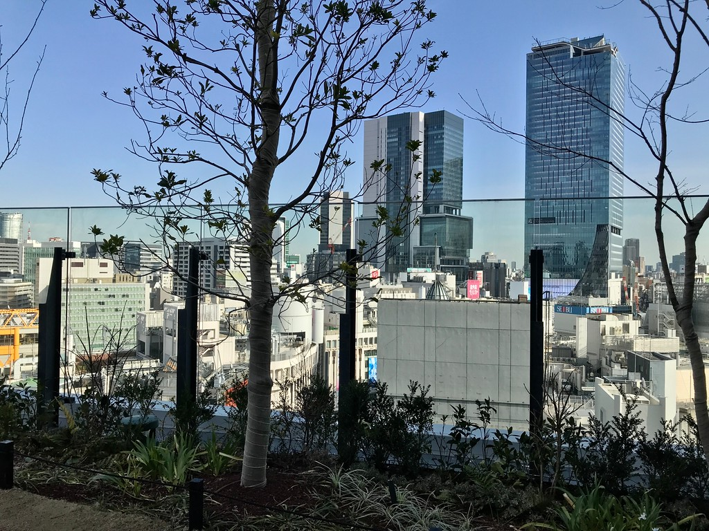 View from Shibuya Parco rooftop