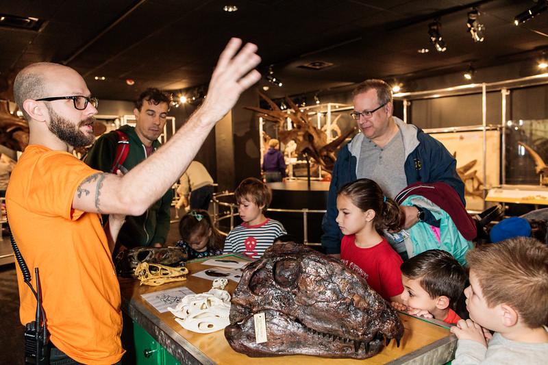 COSI-Dinosaurs-Exhibit-153.jpg