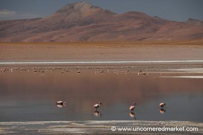 Salar de Uyuni from Tupiza