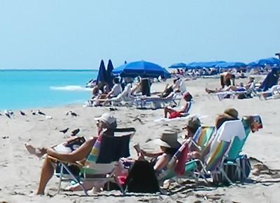 Florida:  Miami Beach, Miami, Coral Gables
