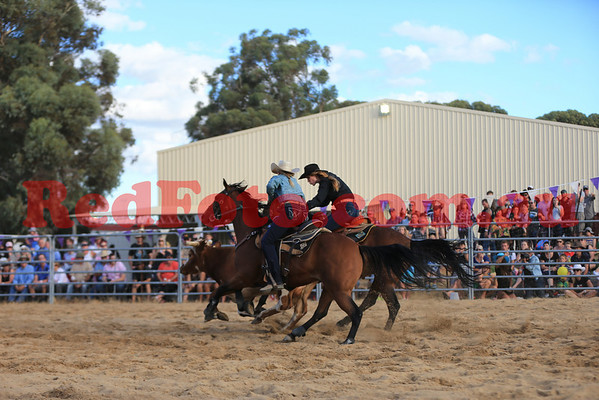 2014 03 08 Wagin Woolorama Rodeo Steer Undecorating