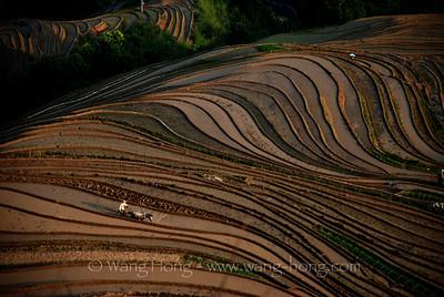 Guangxi Province 广西省