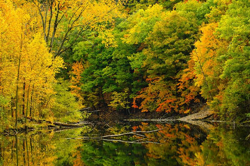 20091017_rocky_river_reservation_025.jpg