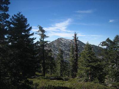 Timber Mtn 2-16-15