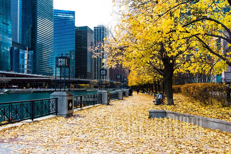 Along the Chicago Riverwalk