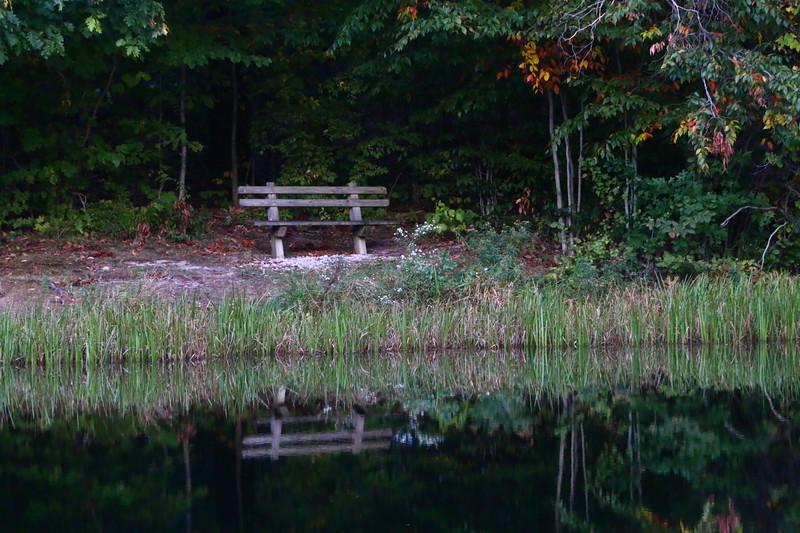 Canon 70d cattaragus,NY, and Ohio parks 10-12-2016 127.JPG