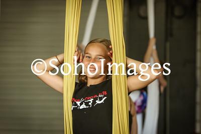 Dance & Circus Arts of Tampa Bay