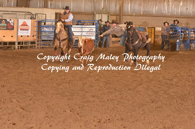 Steer Wrestling Short Go