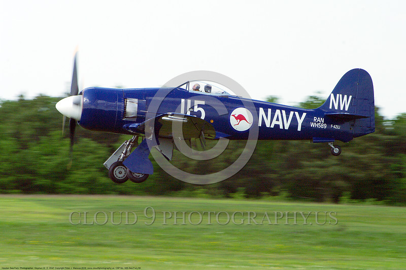 WB-Sea Fury 00060 A landing blue Hawker Sea Fury fighter warbird picture by Stephen W. D. Wolf.JPG