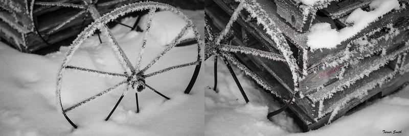 Spoked Snow