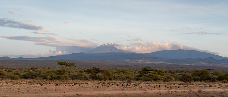 Mt Kilimanjaro without her veil of clouds