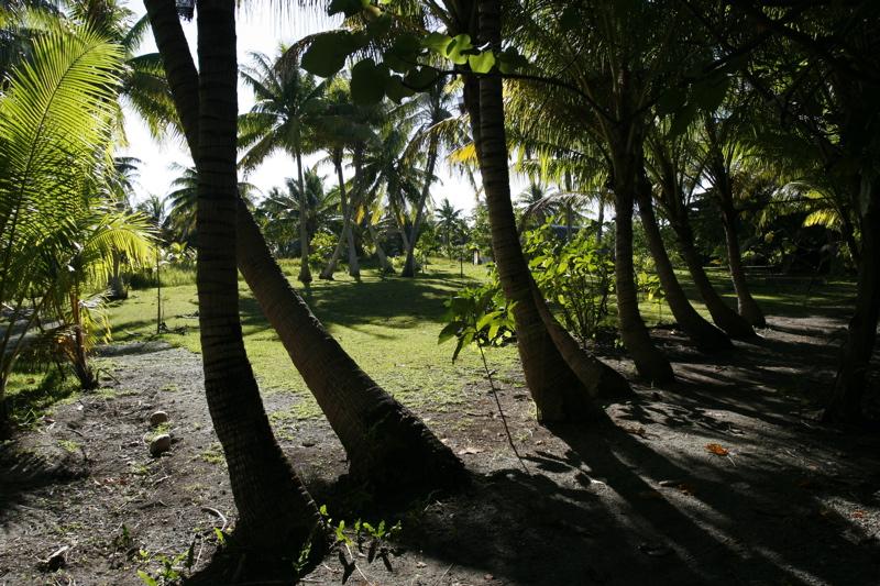 Path to Kuriri Village