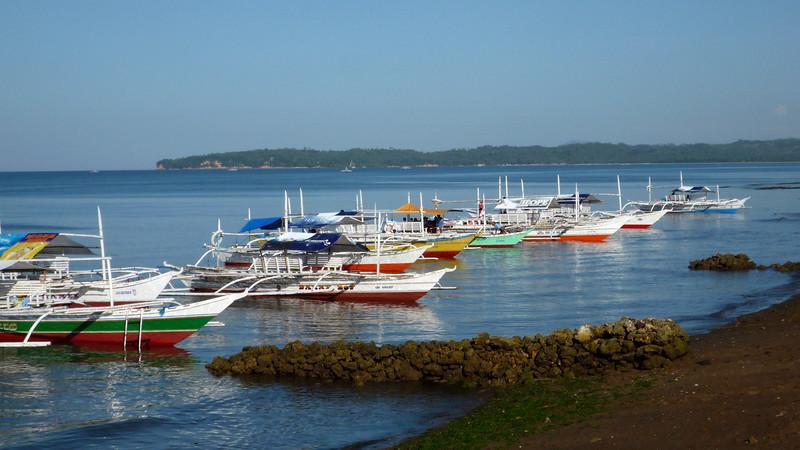 c donsel boats.JPG