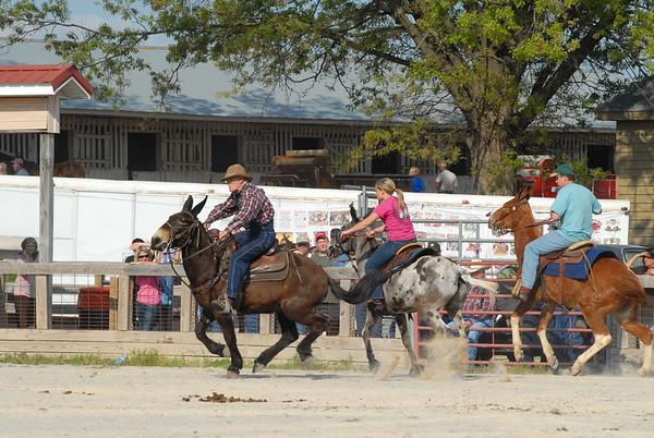2012 Jackpot Mule Races