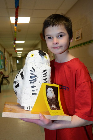 Hoot…Fifth Grade Owl Study photos by Gary Baker