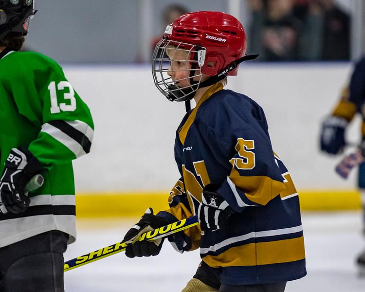 2019-02-03-Ryan-Naughton-Hockey-9.jpg