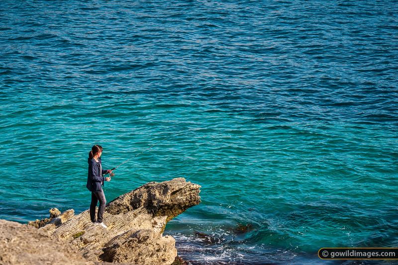 Ocean Catch