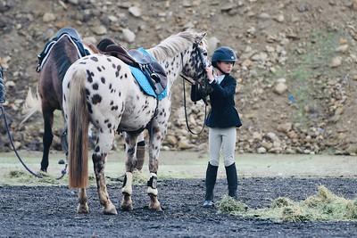 12/9/18 Murrieta Equestrian Center