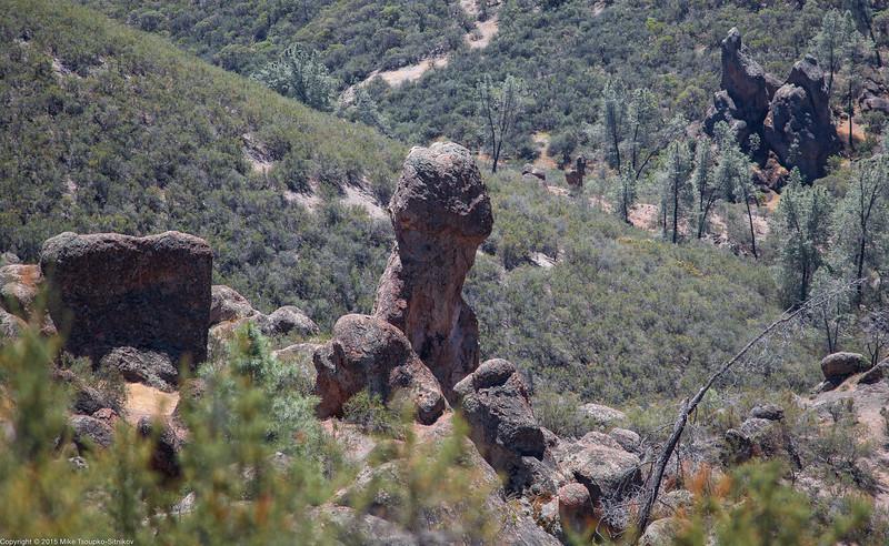 Pinnacles National Park 7996