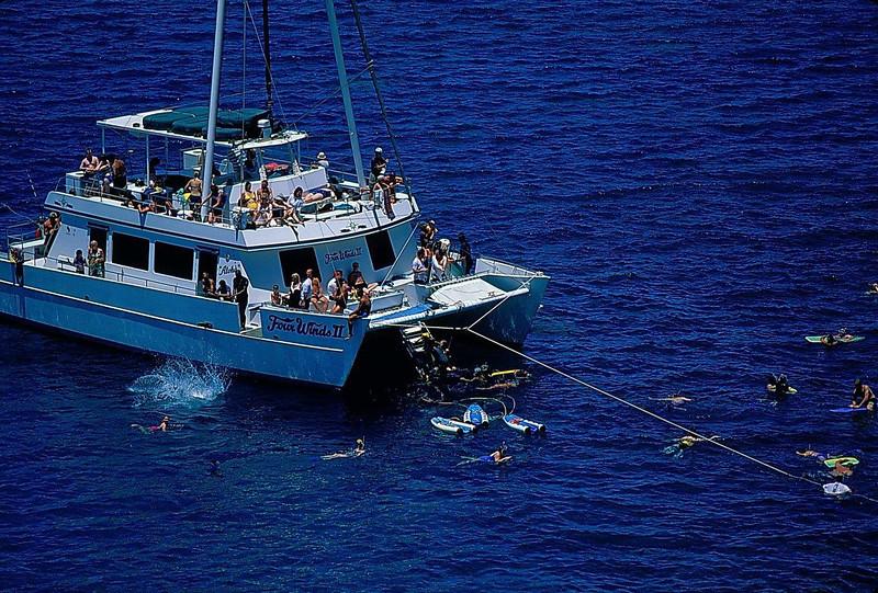 HI Maui Snorkelers 4 Winds.jpg