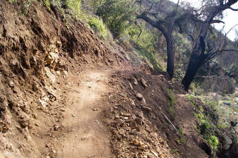 201201291628-El Prieto Trailwork.jpg