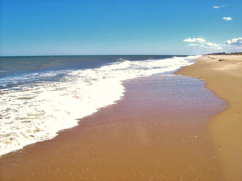 Dam Neck Beach (12).jpg