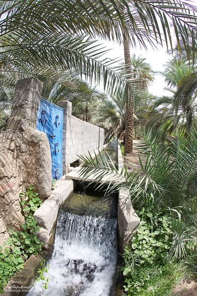 Aldhahir - Bidyah 2.jpg