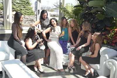 Lopresti Bridal Shower 2016-05
