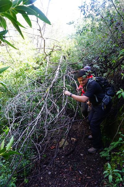 20160218076-Gabrielino Trail Scouting.JPG