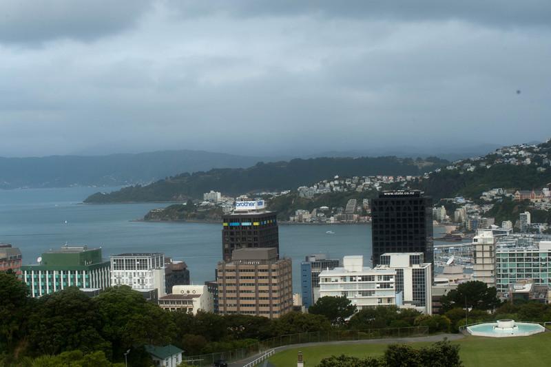 Wellington5627.jpg