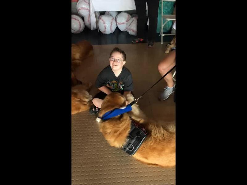 Dogs & Kids 2.mp4