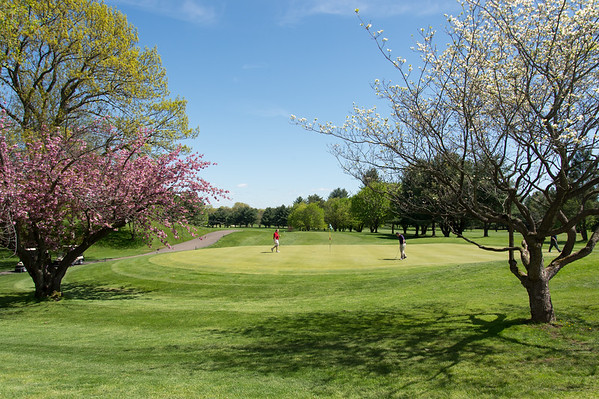 05/6/19 Wesley Bunnell | Staff Trees blooming under perfect sky's at Stanley Golf Course last May.