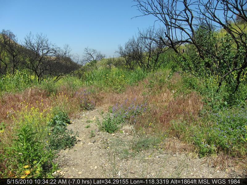 20100515025-Doc Larson Trail Recon.JPG