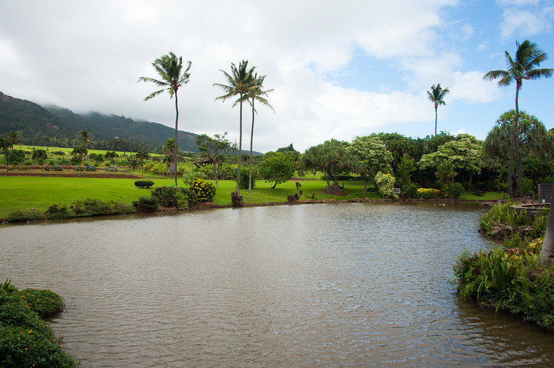 Maui_20181025_155137-920.jpg