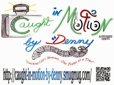 2012 Le Tour de Donut