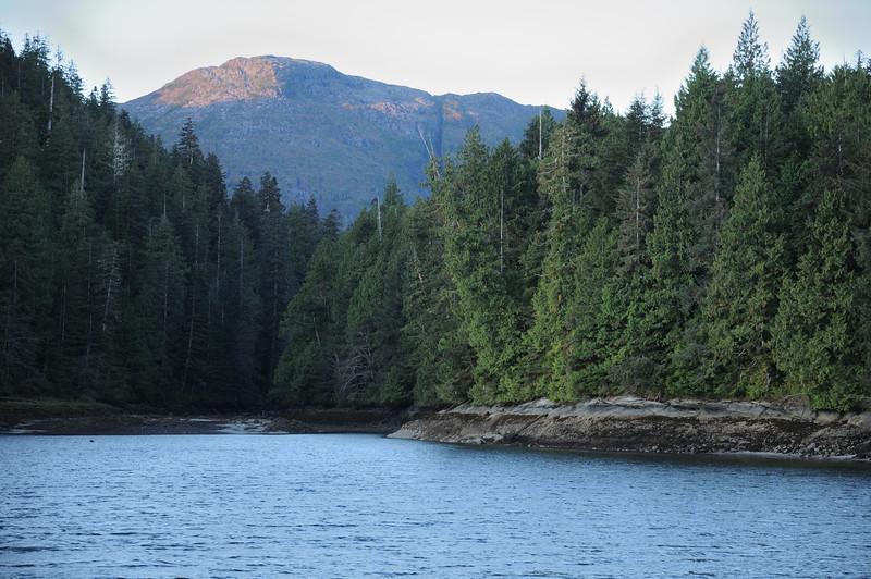 Riorden creek