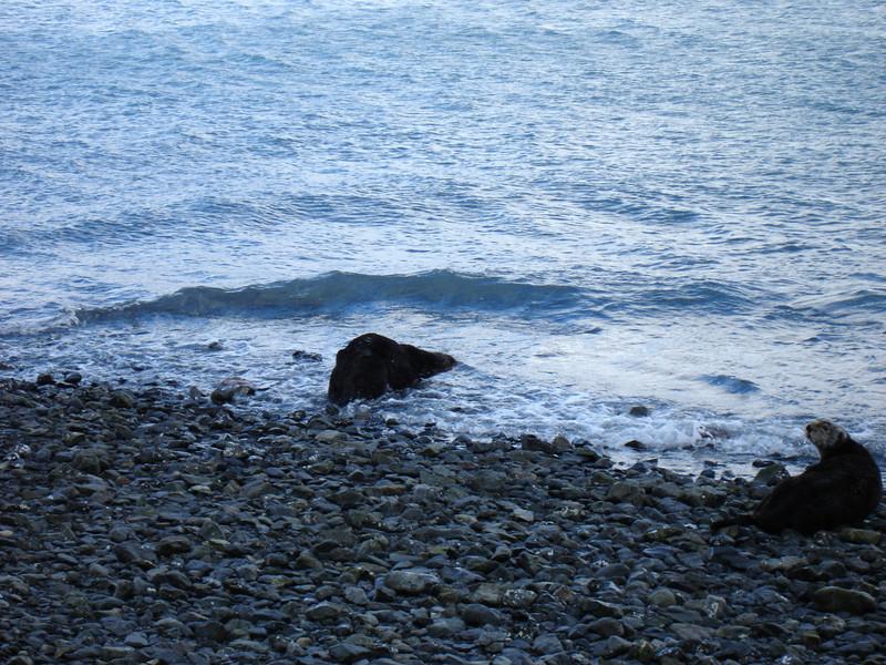 Alaska 2008 104.jpg
