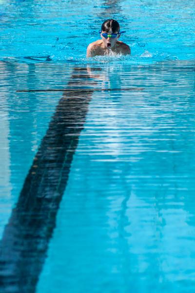 16Feb2016_MS Swimming Carnival_0638.jpg