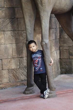 2012-12-05_Disney Trip