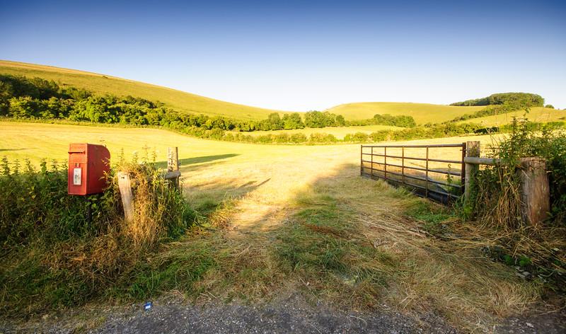 Rolling farmland landscape at Melbury Abbas