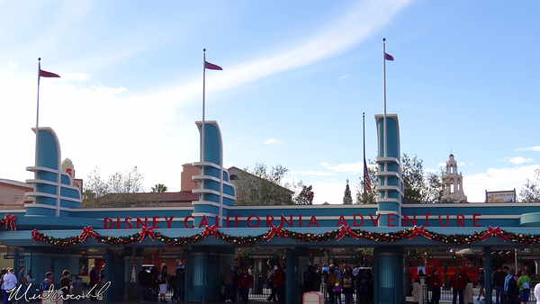 Disneyland Resort 11/22/13
