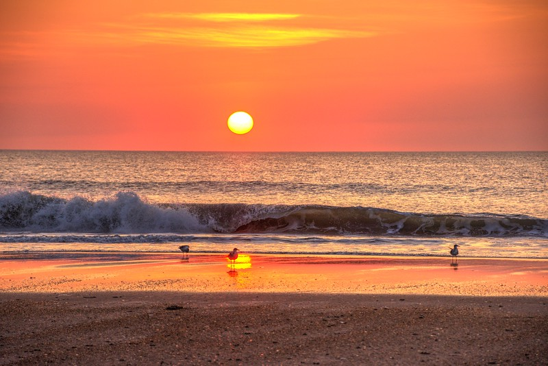 Sunrise-corolla-June13d-Beechnut-Photos-rjduff.jpg