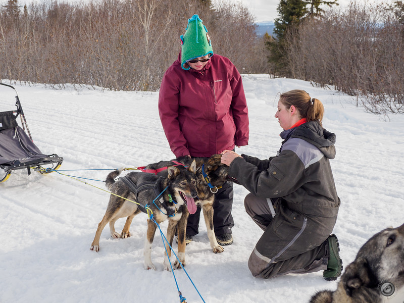 20190325_Blaire_and_Liz_Mushing_19.jpg