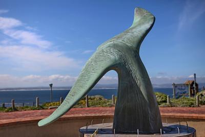 Hermanus (aka. Whale Town)