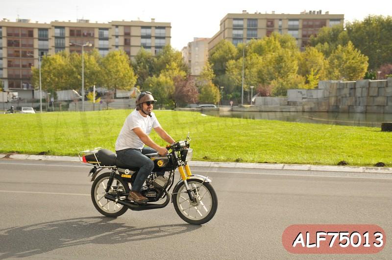 ALF75013.jpg