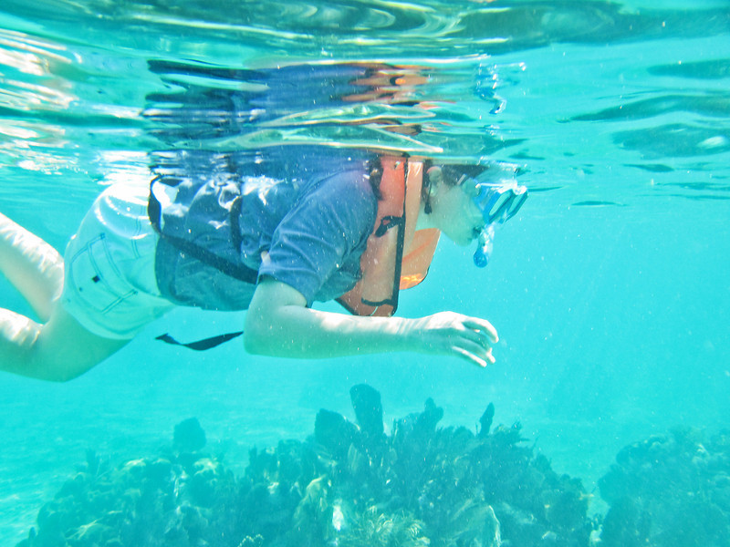 John Pennekamp Coral Reef State Park - Key Largo