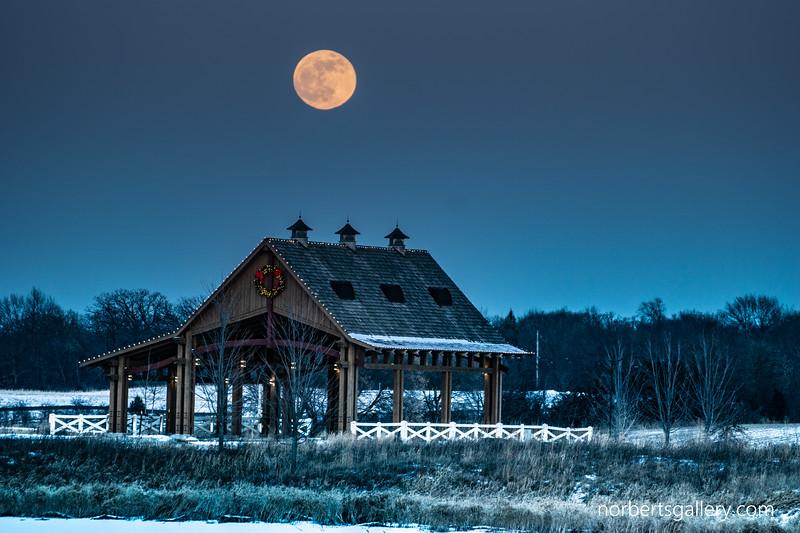 Blood moon rising 2019 1-20 WM-6.JPG