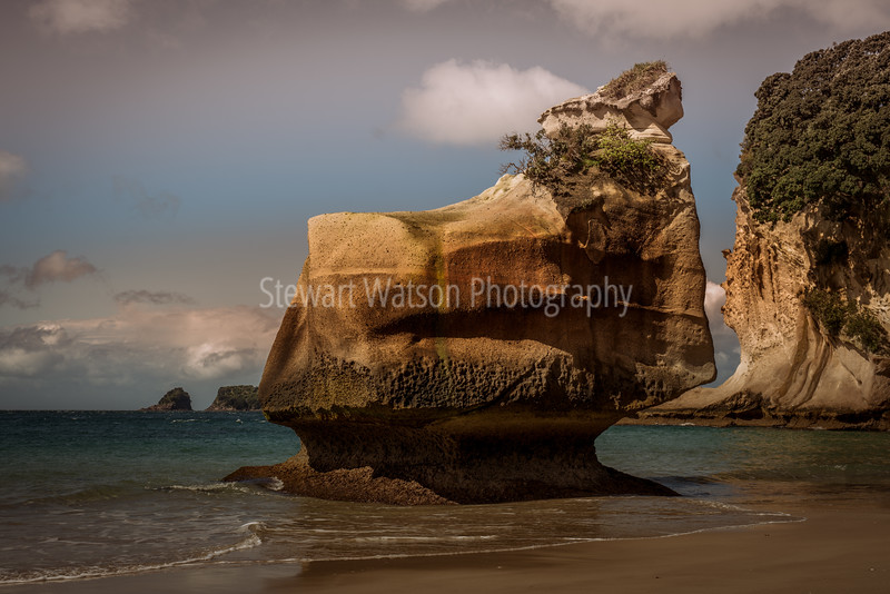 Rock formations at Cathedral Cove