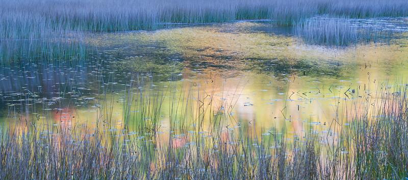 Reflections on The Tarn II
